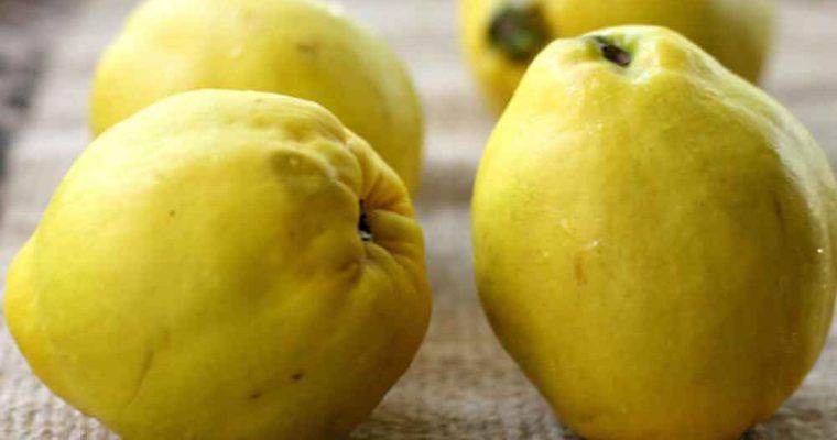 درمان وسواس فکری با میوه به